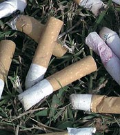 Hela 48 procent av nedskräpningen i Tyresö består av fimpar.