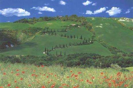 Spring in Tuscany.